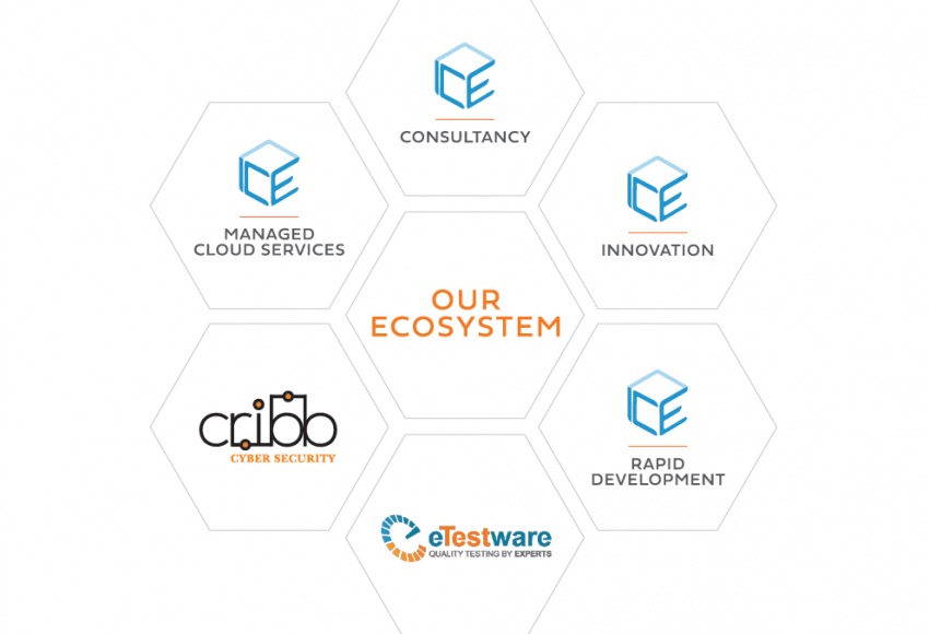 CRIBB Cyber Security, part of theICEway