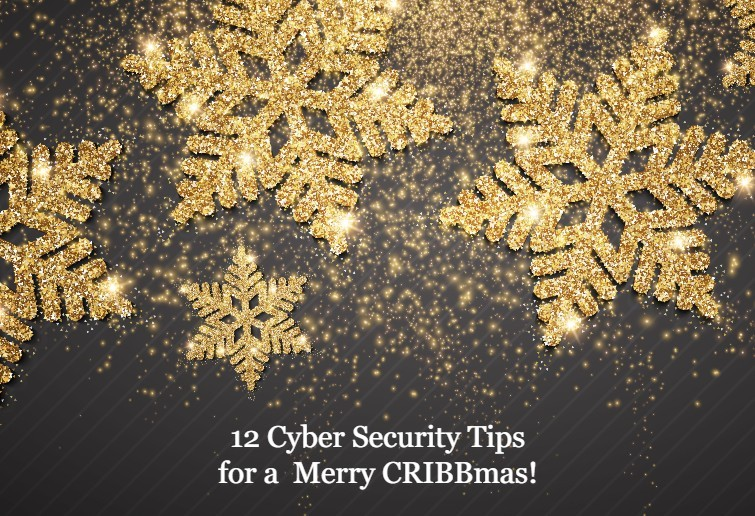 12 Cyber Security Tips for a Merry CRIBBmas